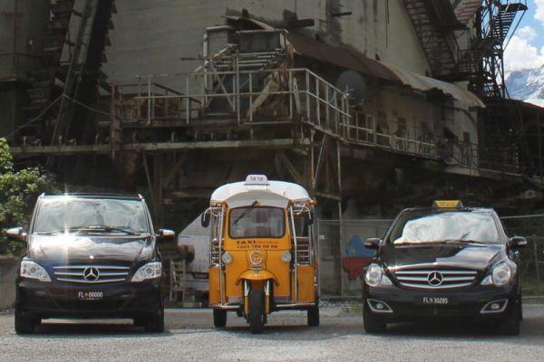 Batliner Taxi Service